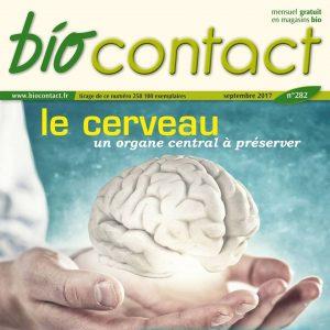 Cerveau et alimentation