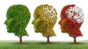 Alzheimer, Parkinson : les bactéries et l'environnement y sont pour beaucoup